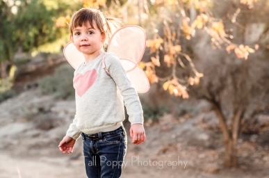 Learning to Fly-4